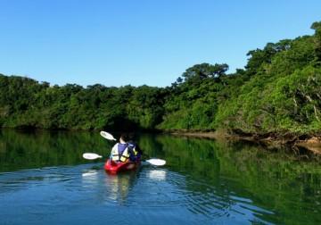 沖縄の川系カヤックがおもしろい!