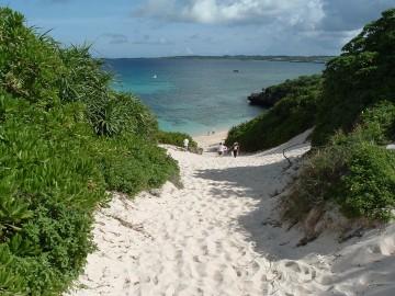 観光客が少ない冬の沖縄の魅力!